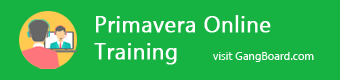 Primavera Online Training